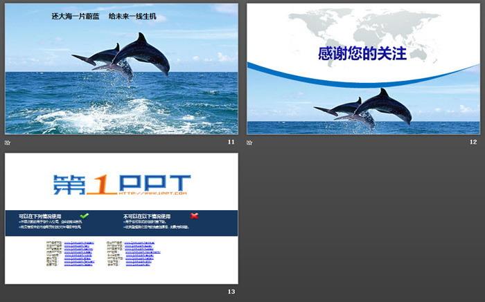 海洋环境 大海幻灯片背景图片 关爱海洋环境保护宣传PPT模板下载