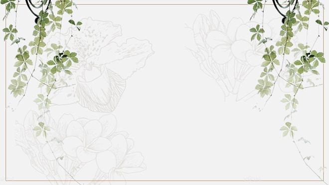 綠色藤蔓植物ppt背景圖片 三張綠色淡雅植物圖案ppt背景圖片