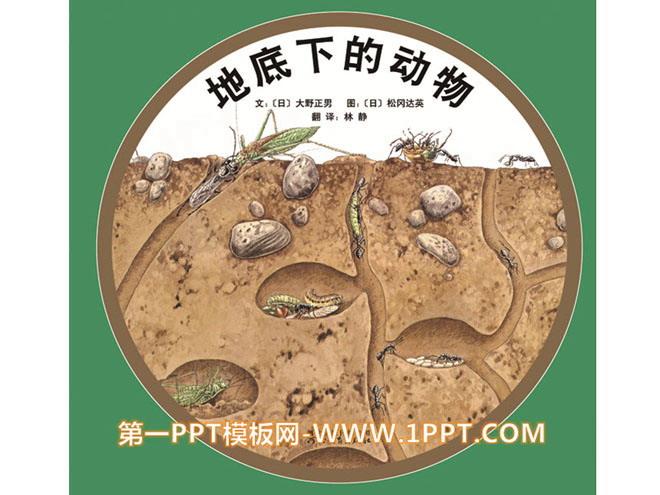 绘本故事ppt下载 《地底下的动物》绘本故事ppt